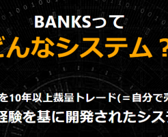 FXシステムのBANKSとは?